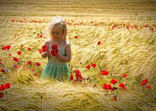 La beauté plaît aux yeux, la douceur charme l'âme