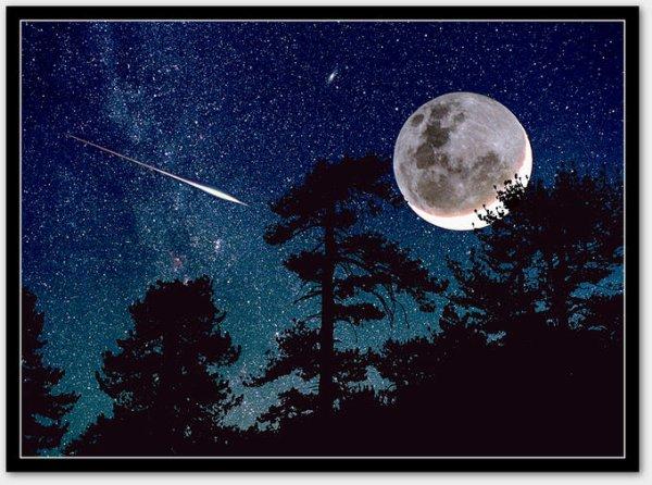 Chaque être humain est une étoile qui mérite la chance de briller