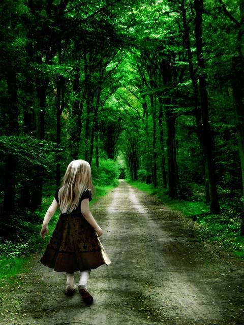 Le chemin se construit en marchant