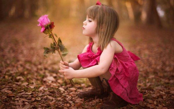 Parmi les épines les plus abondantes est la plus belle rose