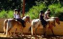 Photo de hacienda-poneyclub
