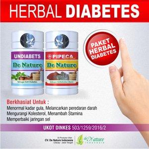 Obat Herbal Khusus Penyakit Diabetes