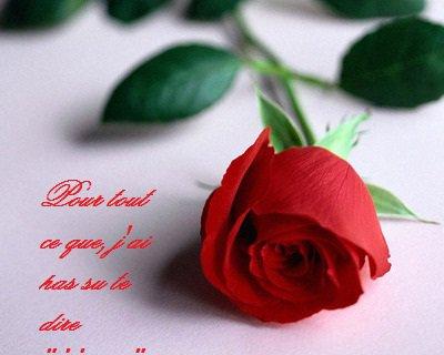 fleurelove,amoursincere