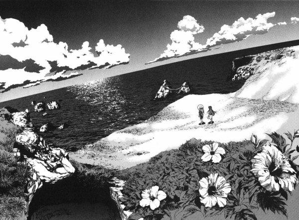 Manga: Umi No Misaki,tome 1, 3.