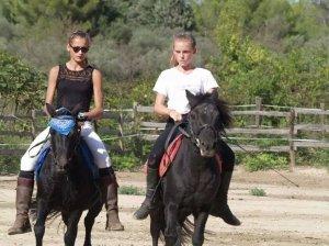 Les meilleurs poneys du monde... ♥