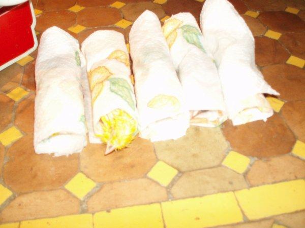 !!!como prepare mes canaris avant les concours!!