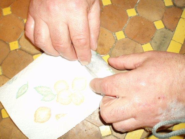 como prepare mes canaris avant les concours