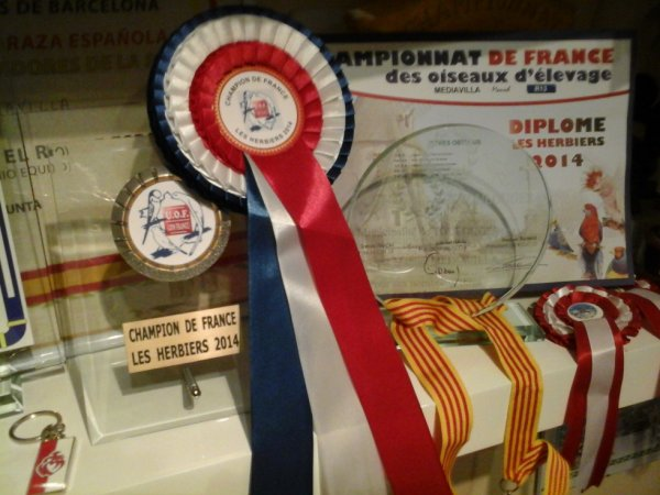 Pour la 25 fois champion de France