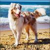 Aussie-Activity