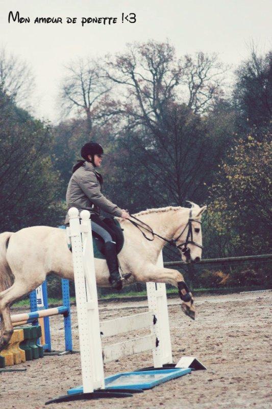 L'équitation plus qu'une simple passion <3