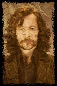 Sirius Black Mon Personnage Préféré Dans Harry Potter ;D