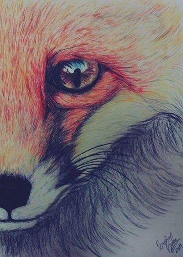 ▓ Mon renard flamboyant ▓