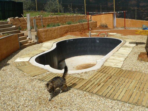 Le chat visite le chantier !!!