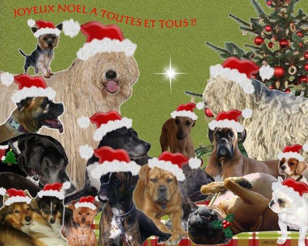 bonne année 2012 a tous