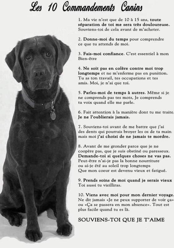 les dix mesures