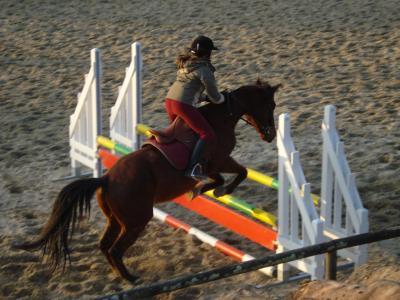 Caro' (Sur Lorenzo, ancien cheval du club.)
