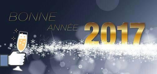 bonne année a toutes et a tous