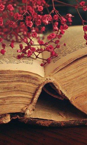 Mes livres lus