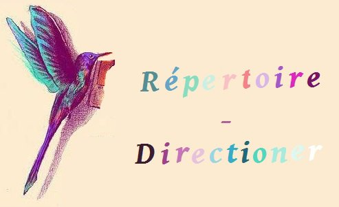 Chat directx