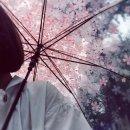 Photo de Happy-Drama