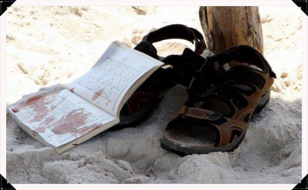 Tunisie : attaque meurtrière dans un hôtel touristique de Sousse