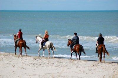 balade à la mer (jerba en Tunisie)