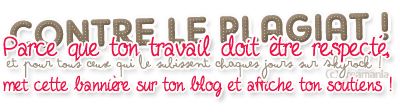 Bienvenu dans mon blog ©