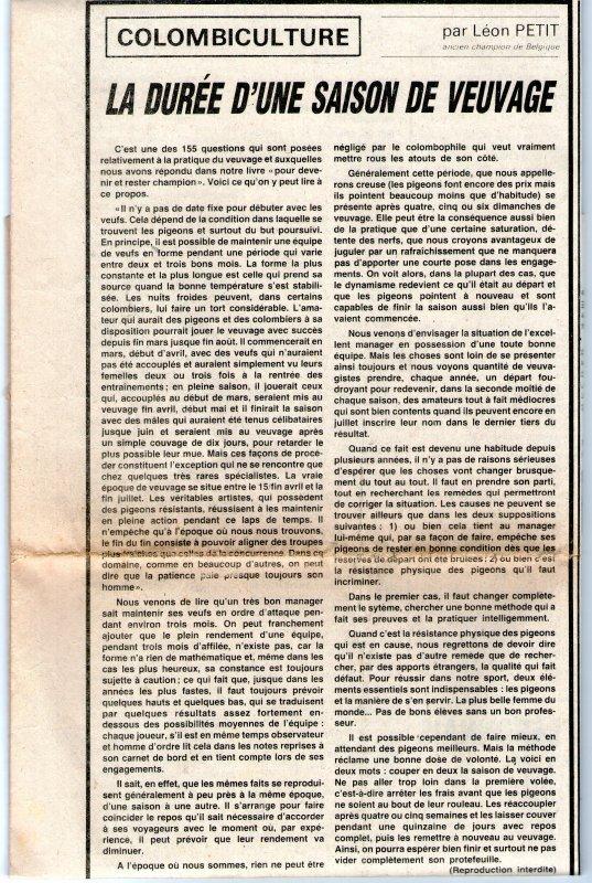 La durée d'une saison de veuvage (1982)
