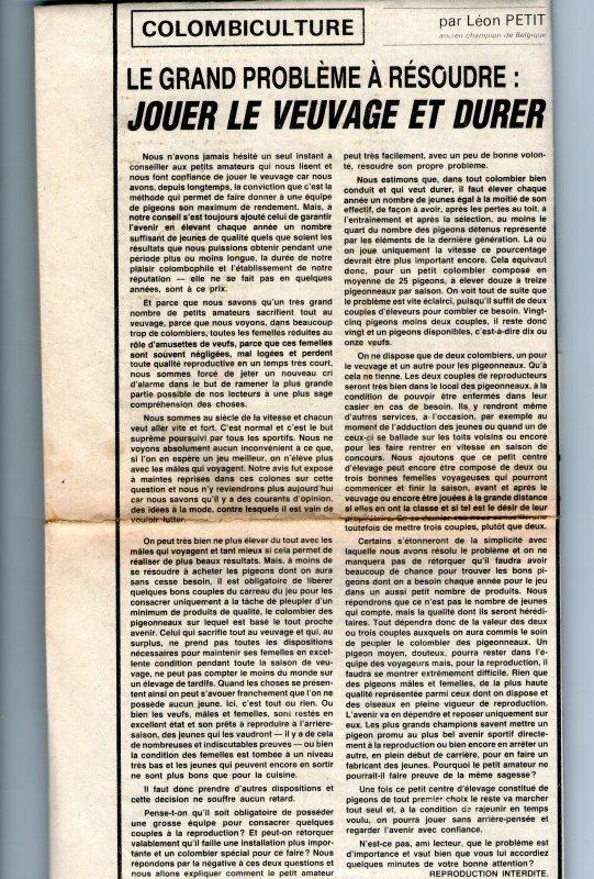 Jouer le veuvage et Durer (1982)