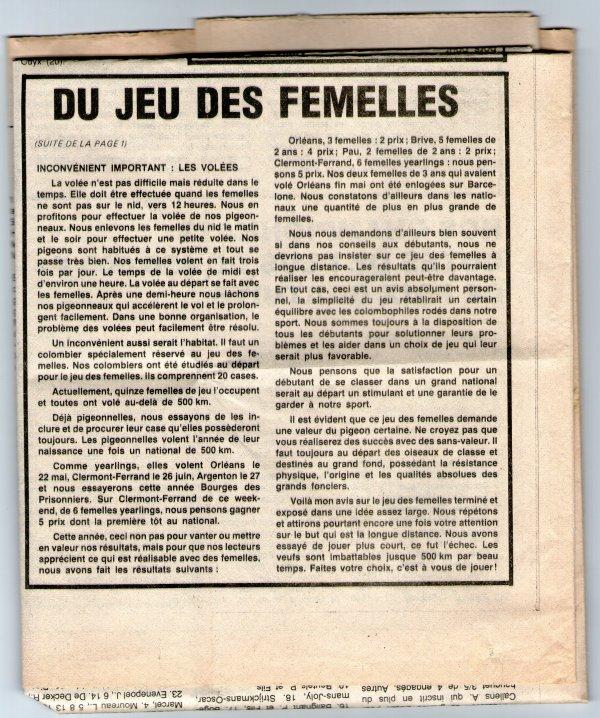 Du jeu des femelles (1982)