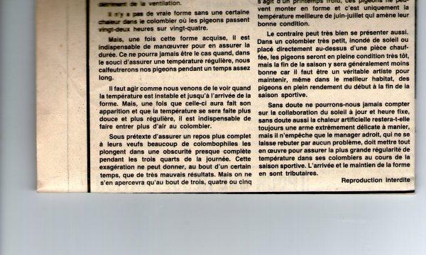 forme récalcitrante (1982)