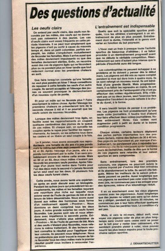 Des questions d'actualité (1984)