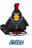 Photo de Ete22deClubPenguin