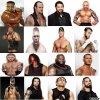 Les participants de la WWE!