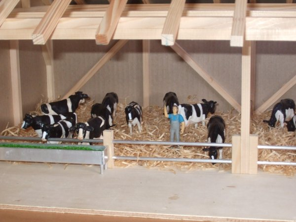 suite étable à vache finit