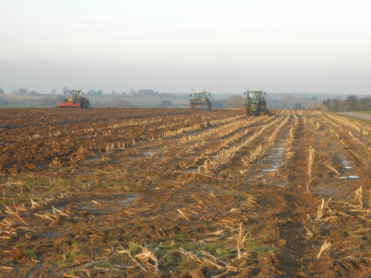 dechaumage labour et semis