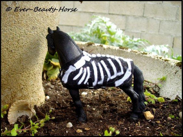 Couverture squelette d'Halloween