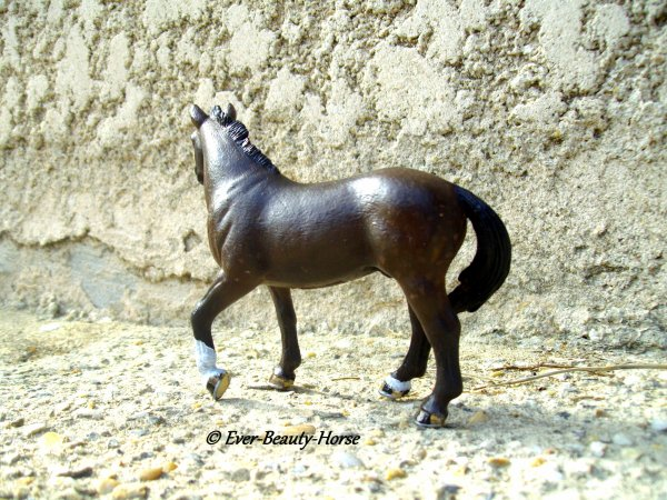 Nouveau custom Drawing d'ever beauty horse