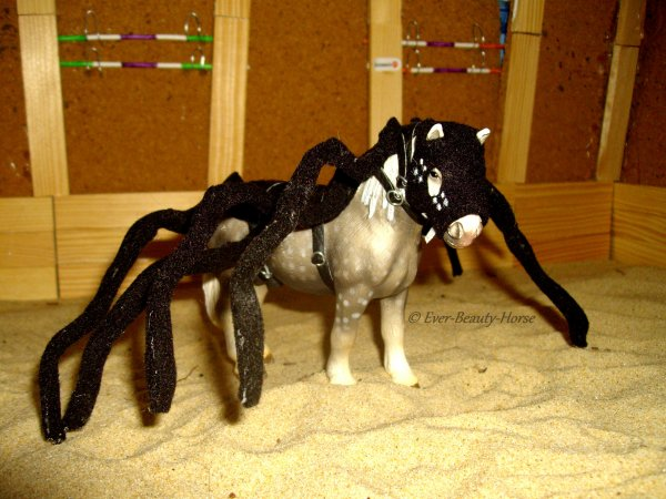Costume araignée spécial Halloween