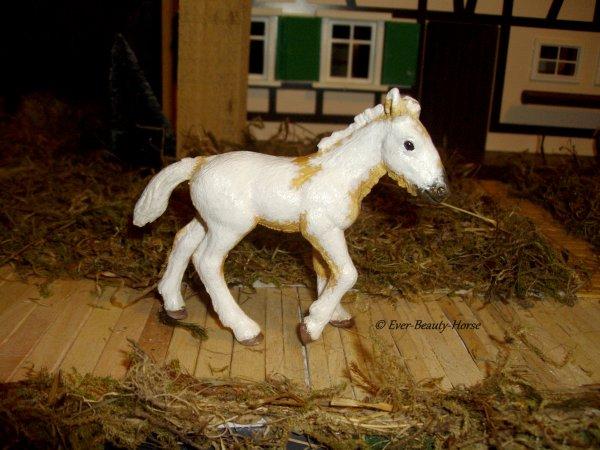Gravure d'Ever-Beauty-Horse