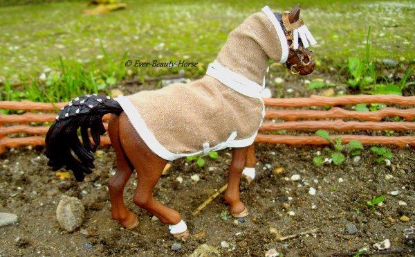 Equipement du cheval au pré
