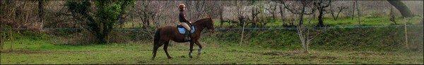 L'amour d'un cavalier pour son cheval est aussi grand que celui d'une mère pour son enfant .