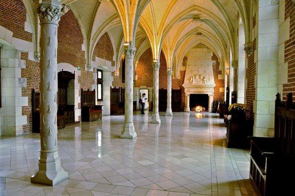 """Principales Demeures des rois de France_château d""""Amboise"""