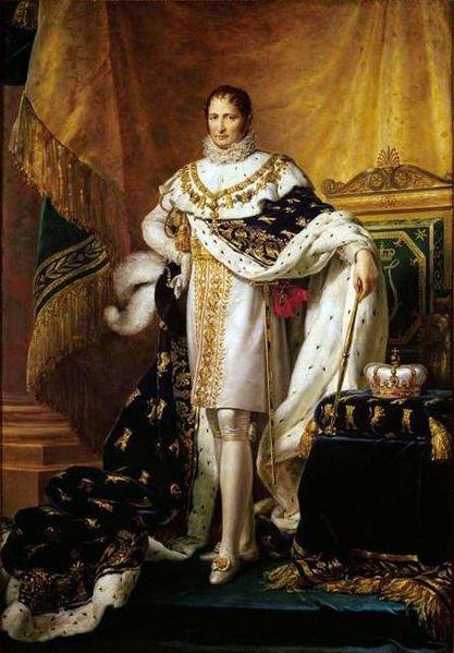 Les Dynasties _ _ Famille Bonaparte