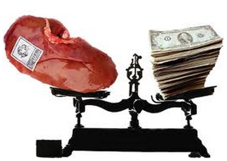 Vente d'organes