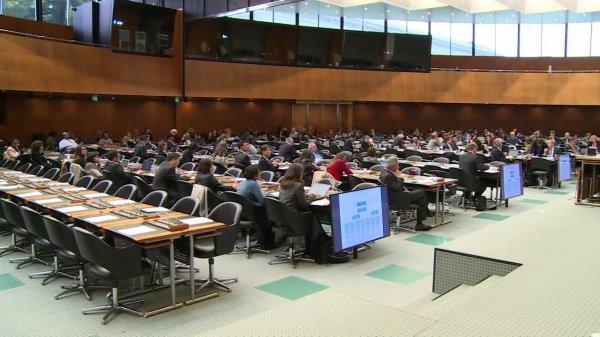 Déclaration sur le droit fondamental aux médicaments essentiels