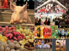 Salon International de l'Agriculture - - Du 27 février au 6 mars 2016