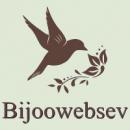 Photo de bijoowebsev