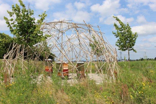 Europa-Park et le Développement durable