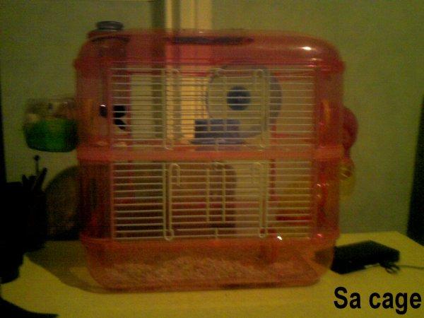 Sa cage ( :